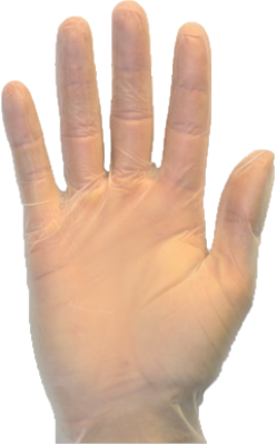 UN-VGPF-100 Vinyl Powder-Free Gloves cs/10/100